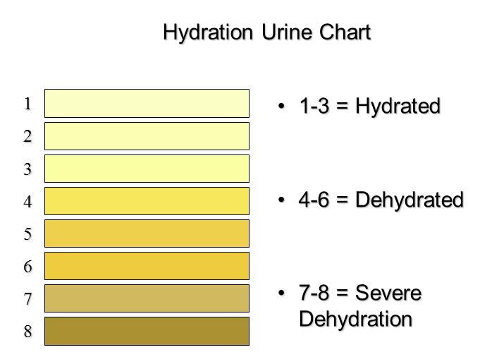 hydrationchart