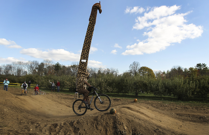 GIRAFFE ON WHEELS
